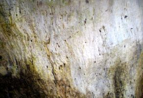Stock texture - Grunge Wood by rockgem