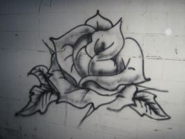 Graffiti rose by sasori-the-dreamer