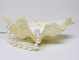 Clam Shell with Pearls Stock7 by D-is-for-Duck