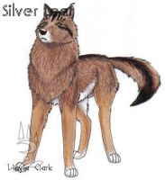 Silver Leaf by TheBlackMountainPack