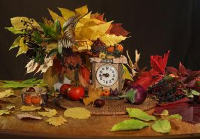 still life 16 by Demissione