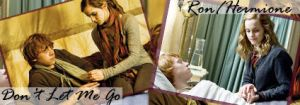 Ron and Hermione Signature by quidditchchick004