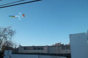 Rainbow Dash Flying Outside My House by Casey-the-unicorn
