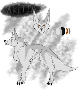 Akitia reference sheet by CorrosiveChaoticWolf