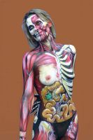 Anatomie by StSch