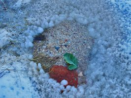 Tiny Pond with Snow Mote. by theblueofmyoblivion