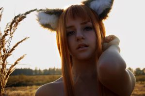 Spice and Wolf - Horo 06 by CrazyRabbit