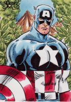 Captain America by Mark Spears by markman777