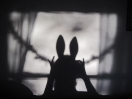 Little Bunny's Shadow by Asylumpatient17