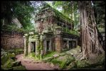 Ta Prohm 1 by Dominion-Photography