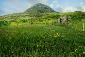 Irish Fantasy Background by tareeree