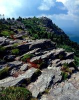 Grandfather Mtn Rock Formation by rdswords
