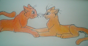 Fireheart and Sandstorm by StarClan