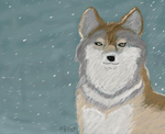 Wolf in snowstorm by Sjus