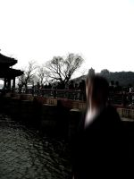 Summer Palace by Mird