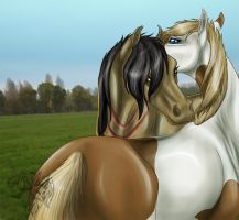 Grooming Together by FlareAndIcicle