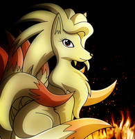 Fire Blaze of Ninetales by pokemastersan