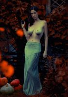 autumn by parampam