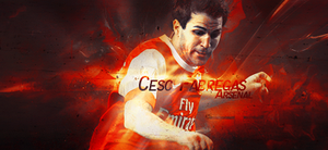 Cecs Fabregas by React1v