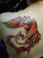 phoenix by scottytat2