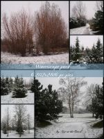 Winterscape pack by Cat-in-the-Stock