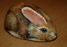 Rock rabbit by starmist