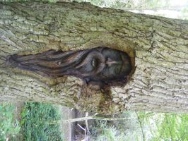 GREENMAN WOODCARVING STOCK by Vee-Deviant