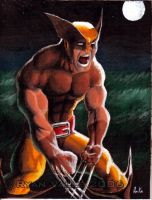 Wolverine in tan costume by R-Valle