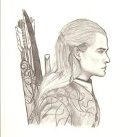 Legolas 2 by Wild-Huntress