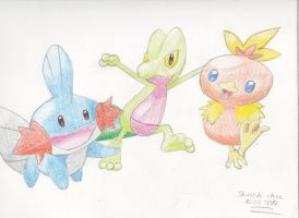 Pokemon 3rd gen starters by Shiroichi-chan