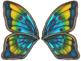 Stained Glass Butterfly Wings by FantasyStock