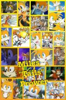Miles Prower or Tails by PrincessEmerald7