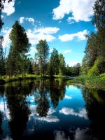 Summertime in rural Finland by Jc428