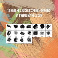18 Free Acrylic Sponge Brushes by ormanclark