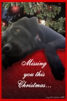 Missing you this Christmas by vaia
