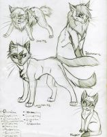 Warrior Cats Set 15 by KasaraWolf
