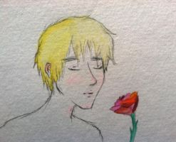 APH- remembrance by rambows729
