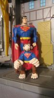 DC SUPER-PETS: SUPERMAN AND BEPPO by monitor-earthprime