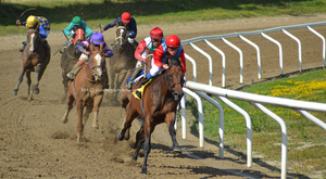 Horse Racing 16 by JullelinPhotography