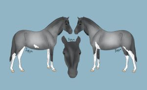 shadowhorse13 Design by crazykate1