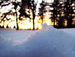 Sunset snow crystals by BritLawrence