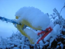 Snow pegs by StivStock