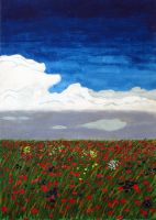 field of poppies by anno1719