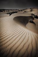 Desert by A-Rashed
