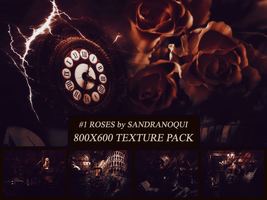 Roses | Texture Pack #1 by sandranoqui