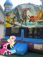 Ponies at a bounce house by ToaDJacara