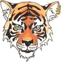 Bengal by Number76