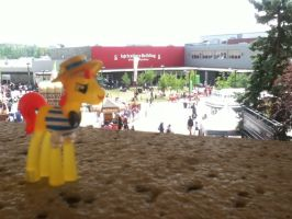PATW 2014 Entry - Calgary Stampede - Flam 1 by drewq123