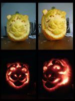 Tiger Pumpkin 2011 by amandas-sketches