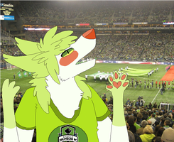 Halp i dont know a think about soccer by Tuxiie